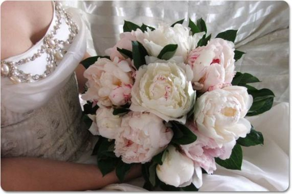 Bouquet Sposa Camelie.Matrimonio Fiori Estate Spose Disperate